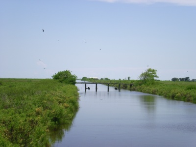 Levee and an old bridge