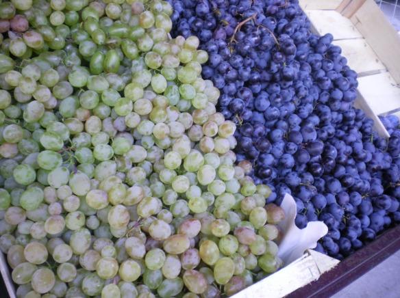 Hungarian grapes