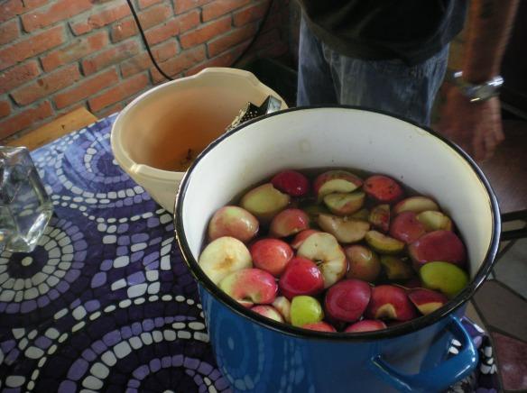 Homemade apple marmalade