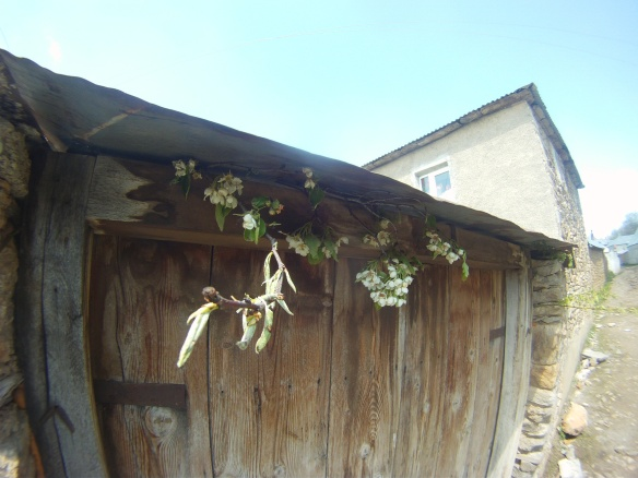 Fresh flowers decorate village houses