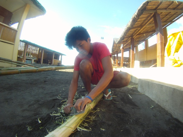 Sanding the bamboo clean for a kubo, bamboo house. This boy spent hours sanding with a butcher knife