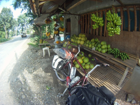Fruit stand, Local price for Papaya is close to $0.50 dollars a kilo, and close to a dollar for Bananas.