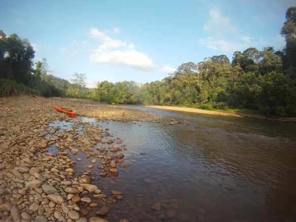 Kayaking the Singai Temburong river