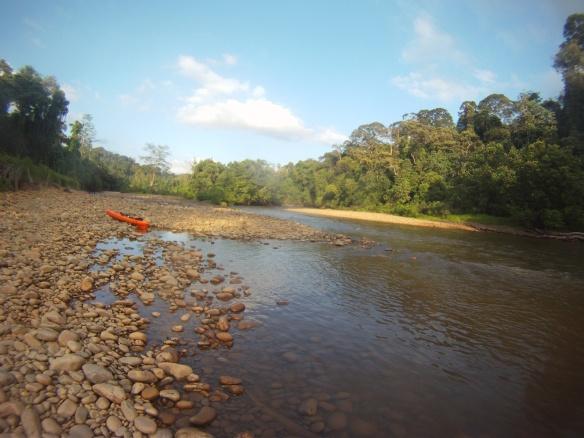 Kayaking the Singai Temburong river