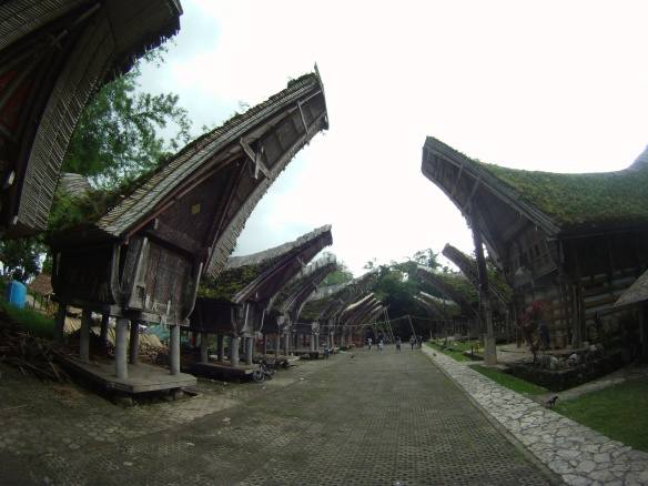 Alang. Torajan structures found throughout Tana Toraja