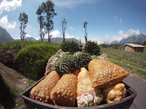 Mountainous vegetables on route to the Pasar
