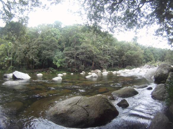 Mossman creek