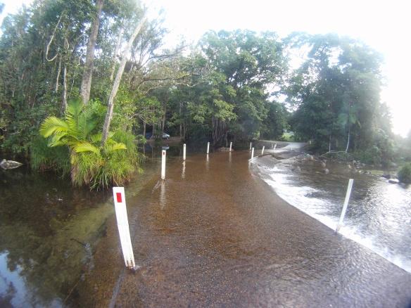 Venturing across a jungle causeway