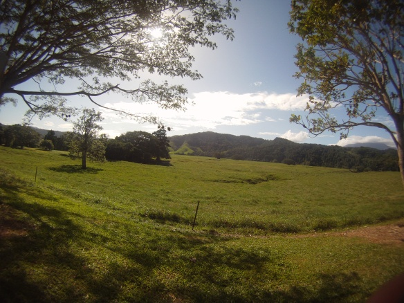 Farm land south of Daintree river