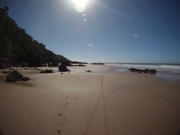 Lonely beaches north of Cape Tribulation. This is where the road officially ends for vehicles.