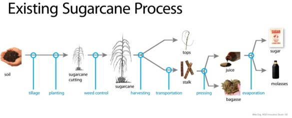 Sugar cane production process