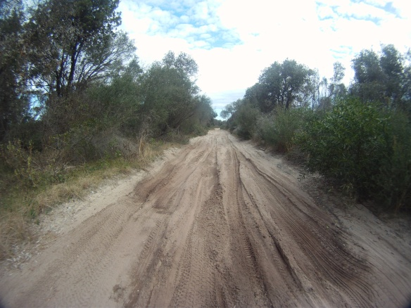 A touring cyclists kryptonite! Sand box back roads en-route to Port Macquarie